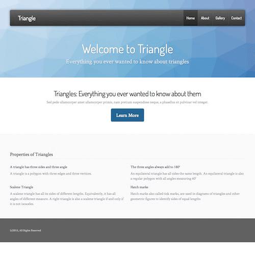 triangle-1 Web Builder